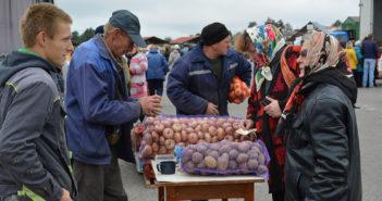 Три субботы подряд в Кореличах будут работать сельхозярмарки
