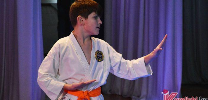 Егор Секач, соревнования по шотокан каратэ-до в Кореличах