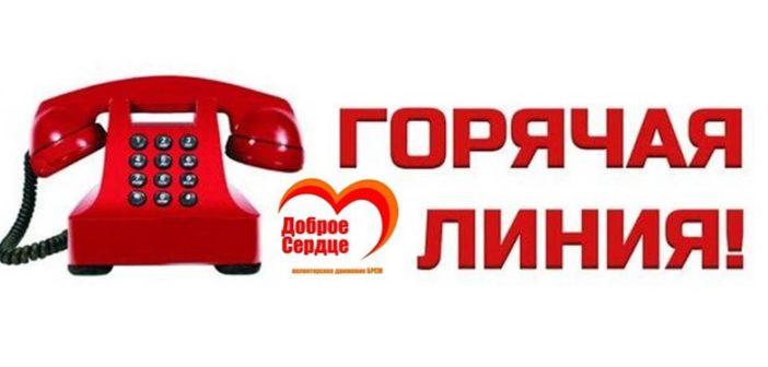 В Кореличском РК БРСМ работает горячая линия помощи пожилым