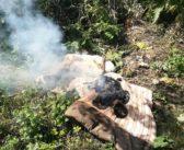 Мужчина пострадал на пожаре в Кореличском районе