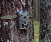 Житель Кореличского района украл фотоловушку в Барановичском лесхозе